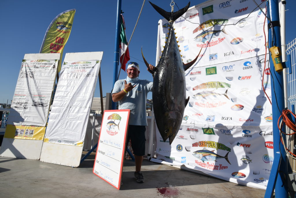 giant tuna on scale with winning angler